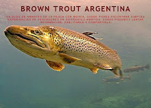 Volver a BROWN TROUT ARGENTINA