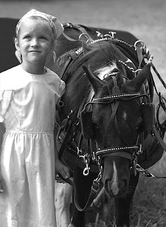 Amish Girl and Horse