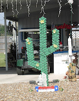 Click for Larger Image of Beer Can Cactus