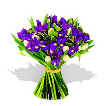 [377-irises_and_tulips_bouquet.jpg]