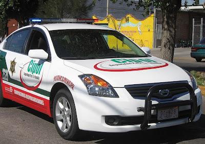 auto, coche, nuevo, Aguascalientes, policía, vehículo, municipal, México