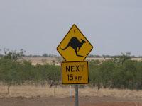 kangaroo warning sign australia next 15 kms