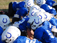 WELCOME TO THE FAUQUIER YOUTH FOOTBALL COLTS' BLOG