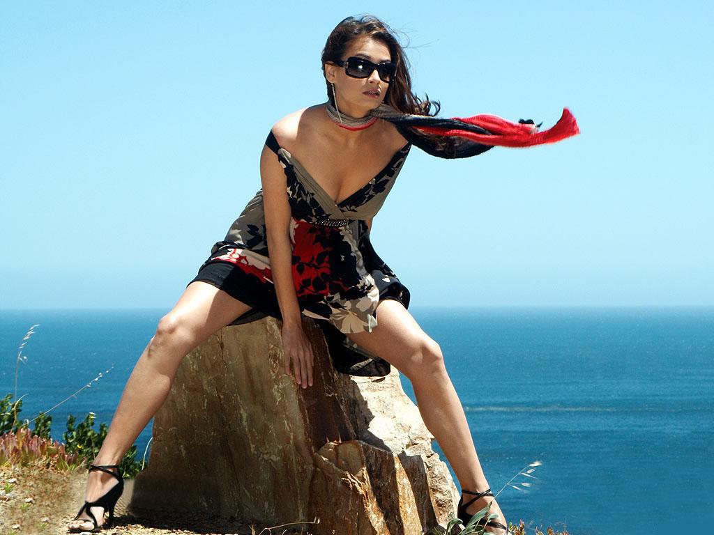http://3.bp.blogspot.com/_RVTXL4Tq5jk/TP-WbUYClUI/AAAAAAAAGOI/pyDlNirl0fo/s1600/Diya-Mirza-in-Bikini.jpg