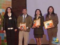 Profesor innovador en las Tic 2008