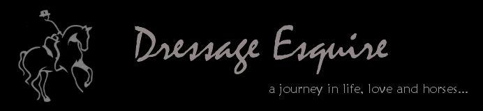 Dressage Esquire