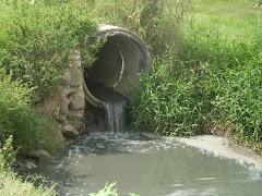 Nosso rio está acabando Maiquinique