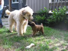 Sam & Murphy September 2008