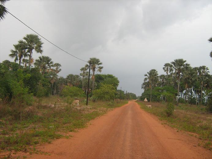 Carretera de Casamance