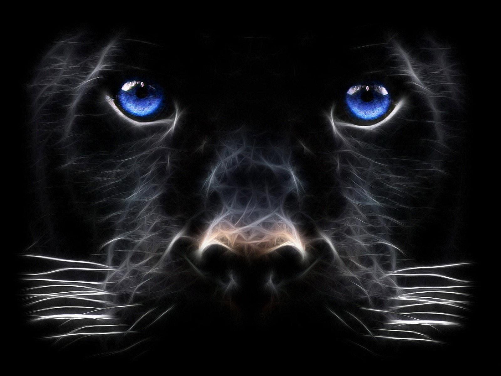 http://3.bp.blogspot.com/_R_GuOlmaOKA/TJKOAcZVToI/AAAAAAAAARg/QtIlUT-rZRs/s1600/Backgrounds_Windows_7_-_Black_Panther,_Big_cat.jpg