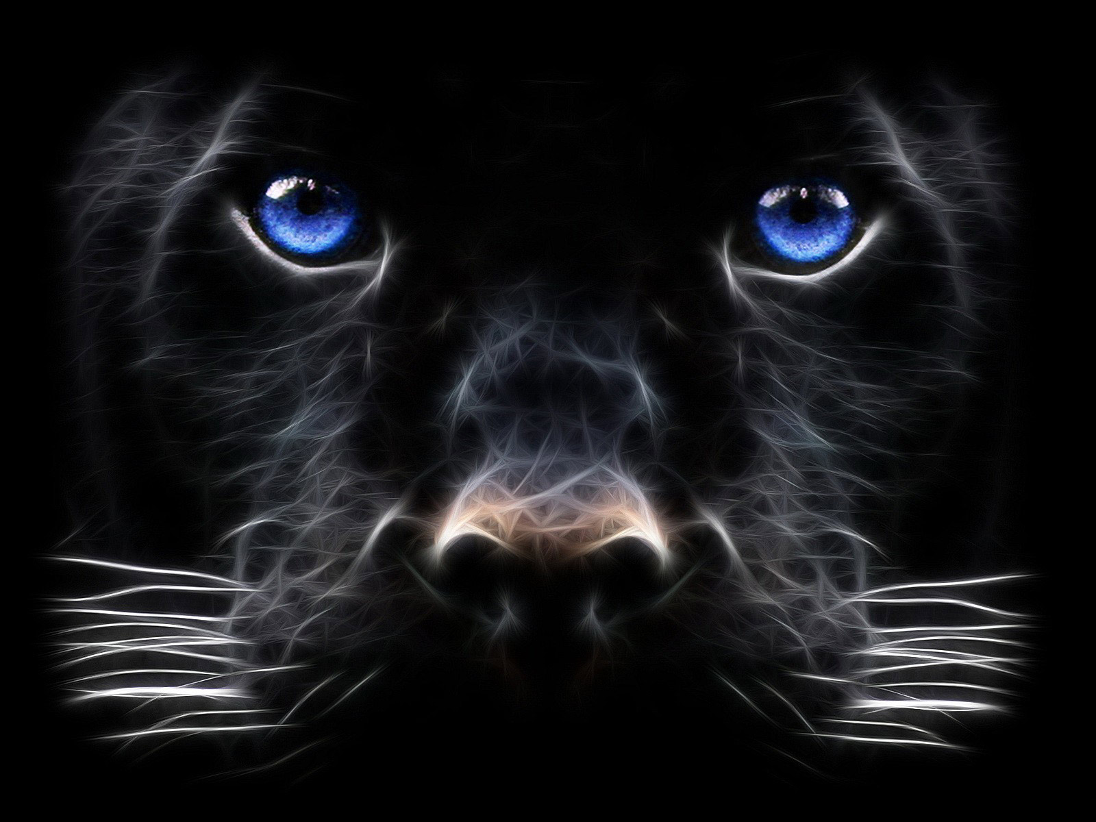 http://3.bp.blogspot.com/_R_GuOlmaOKA/TJKOAcZVToI/AAAAAAAAARg/QtIlUT-rZRs/s1600/Backgrounds_Windows_7_-_Black_Panther_Big_cat.jpg