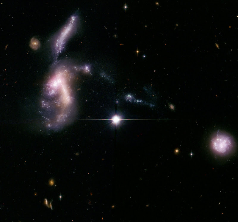 Four dwarf galaxies merging in HCG 31