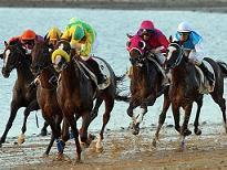 Es la diferencia de opiniones lo que propicia las carreras de caballos