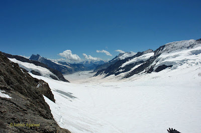 The 14-mile Aletsch glacier as seen from Jungfrau, shining white