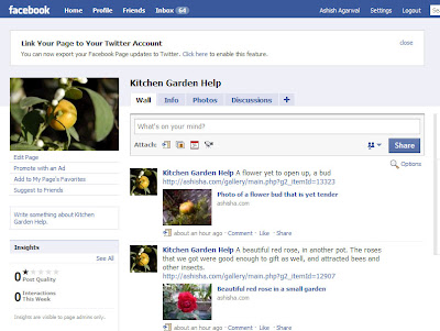 Kitchen Garden Facebook Fan Page, just starting out