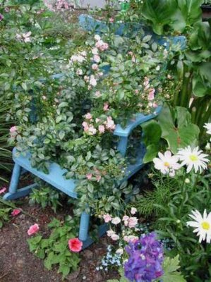 VINTAGE GARDENING &amp; WILDLIFE HABITAT GARDENS