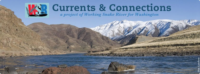 Working Snake River for Washington
