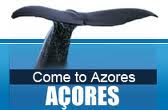 Come and meet the Azores!