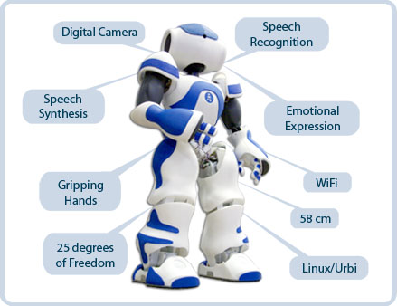 Physics Context Nao Robots They Are Able To Express The Humanies