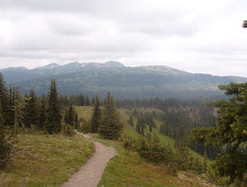 Alpine Meadows at Manning Park