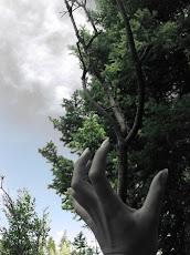 Gamta ir žmogus