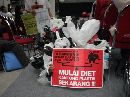 Interview with Tiza Mafira: Gerakan Indonesia Diet Kantong Plastik (GIDKP)