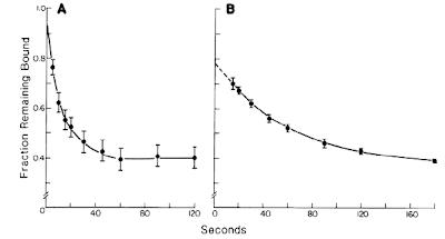 shortage of metformin