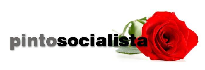 pinto socialista