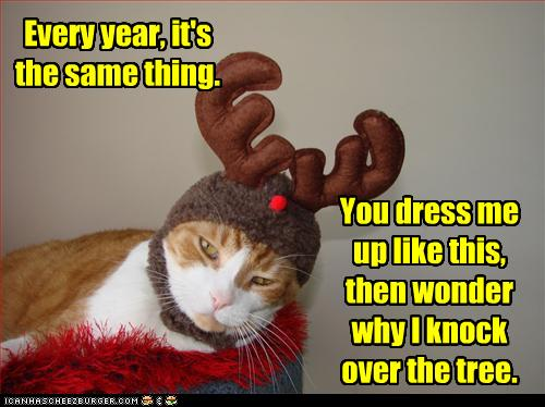 Funny Christmas Memes For Friends : Princess peggysue & princess calay~: merry christmas from all your