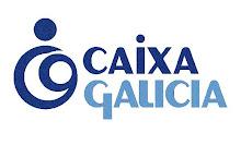 Contas de Caixa Galicia de 2008, (as que dan eles)