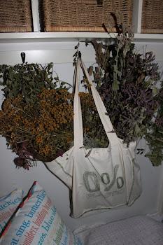 Last Years Herbs
