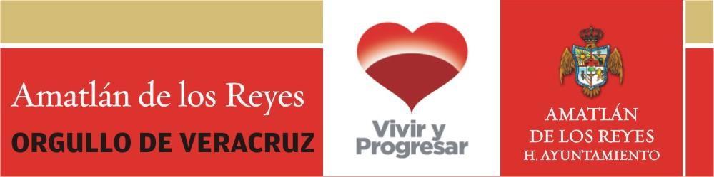 H. Ayuntamiento Constitucional de Amatlán de los Reyes, Ver. 2008-2010