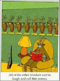 Funny Christmas Card Reindeer