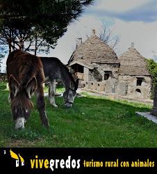 Casas rurales de la familia