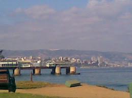 Muelle vergara