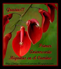 """Primer aniversario de """"Miguitas en el Camino""""."""