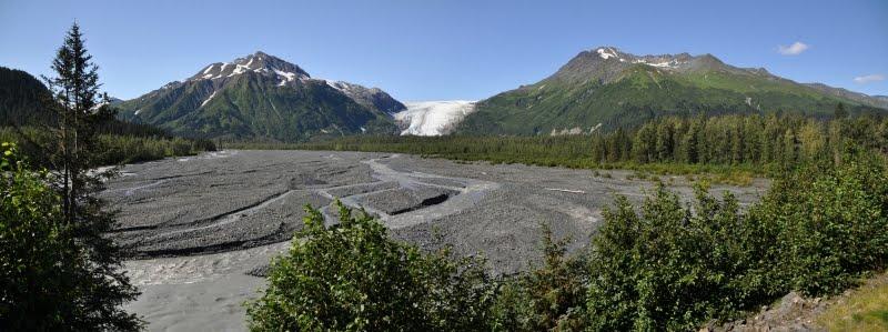 Seward Glacier Tour Coupons