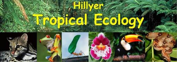 Tropical Ecology 2011