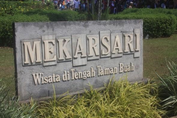 mekarsari-590x393.jpg