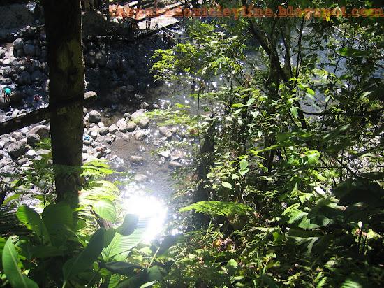 River from Majayjay Falls