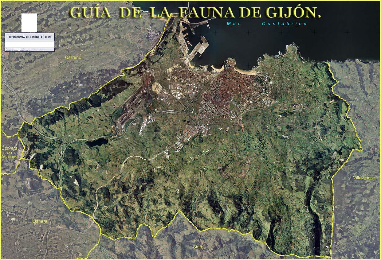 GUIA DE LA FAUNA DE GIJON