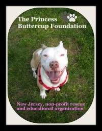 The Princess Buttercup Foundation