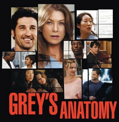 Watch Grey's Anatomy Season 6 Episode 10
