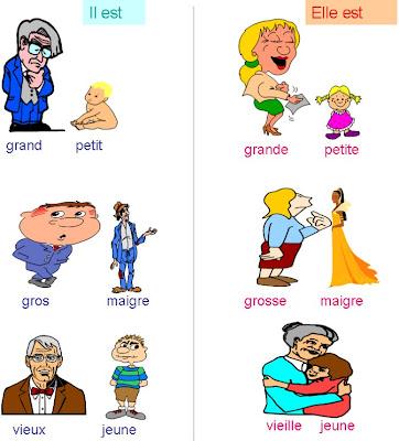 external image adjectifs.jpg