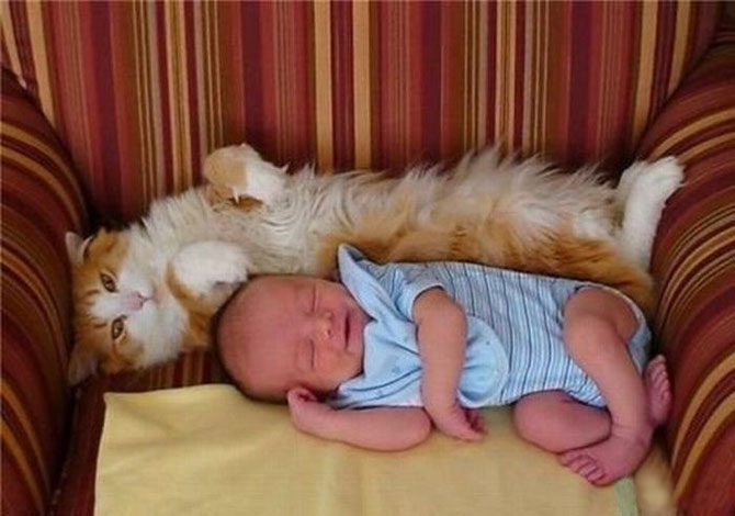 Funny+Photos+of+Kids+and+Animals+%25285%2529 Cute  Photos of Kids and Animals image gallery