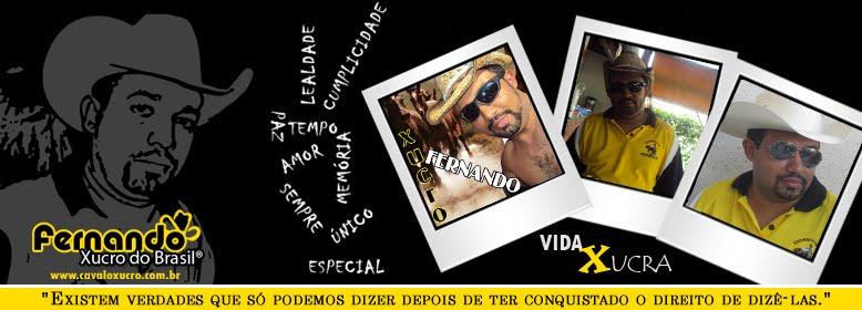 Fernando Xucro do Brasil®