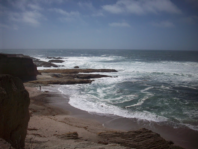 The Glistening Sea at Montano de Oro