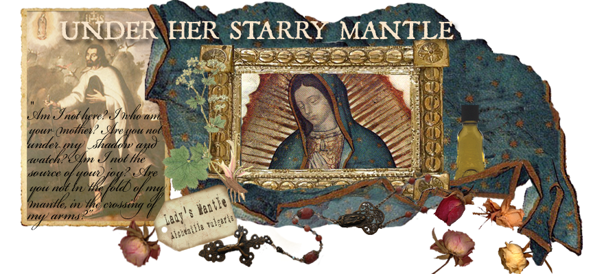 Under Her Starry Mantle