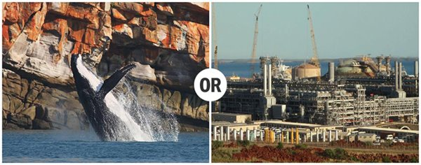 What would we rather see on our Kimberley coast?