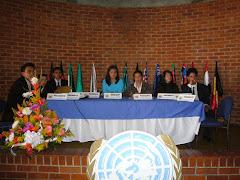 MODELO ONU - 2007